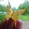 Butterfly (Akira Yoshizawa)