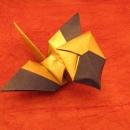 Homing Crane