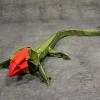Crimsonhead Lizard