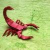 Scorpion Verileg (Robert Lang)