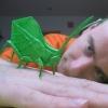 Leaf Katydid (Brian Chan)