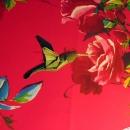 Koliber (Robert Lang)