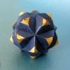 Sonobe Variation 5 (Meenakshi Mukerji)