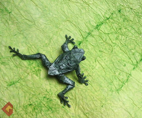 Tree Frog designed by Robert Lang and folded by Grzegorz Bubniak
