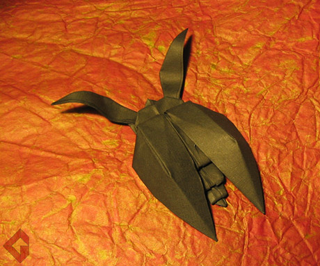 Beetle designed and folded by Grzegorz Bubniak