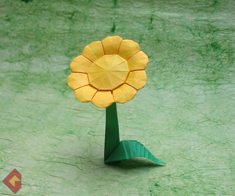Daisy designed and folded by Grzegorz Bubniak